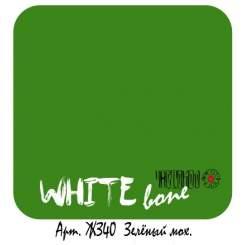 Зелёный мох ЖЗ40